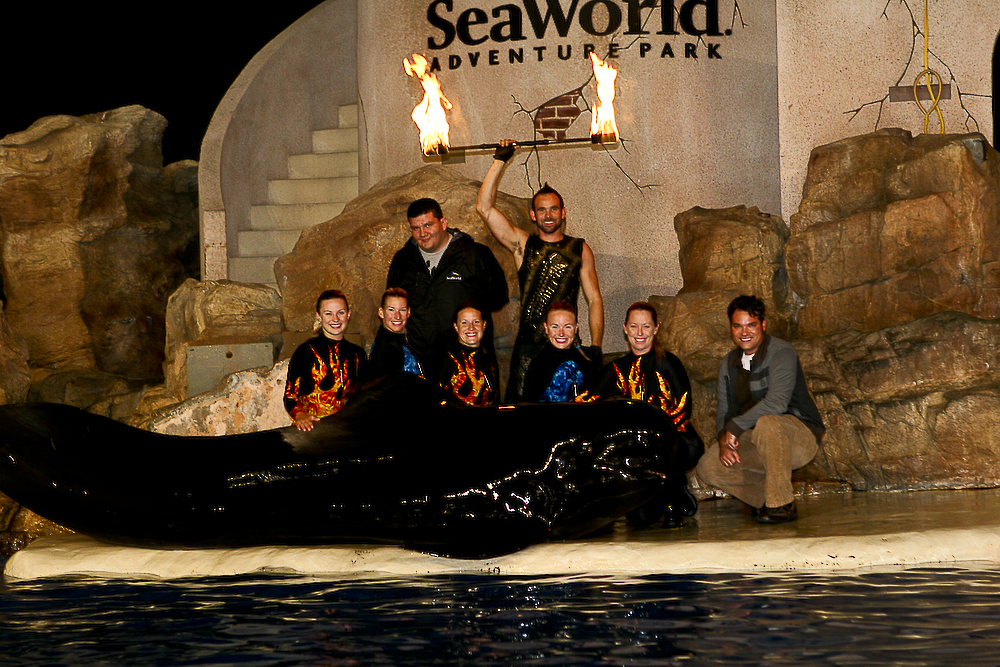 sea world dolphin fire show fire dancing fire performance and fire dance
