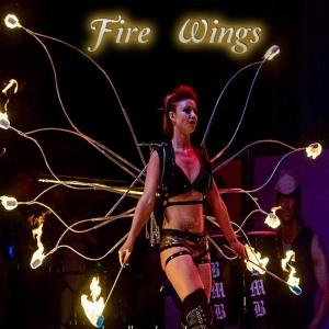Fire Wing dancer spinner for hire